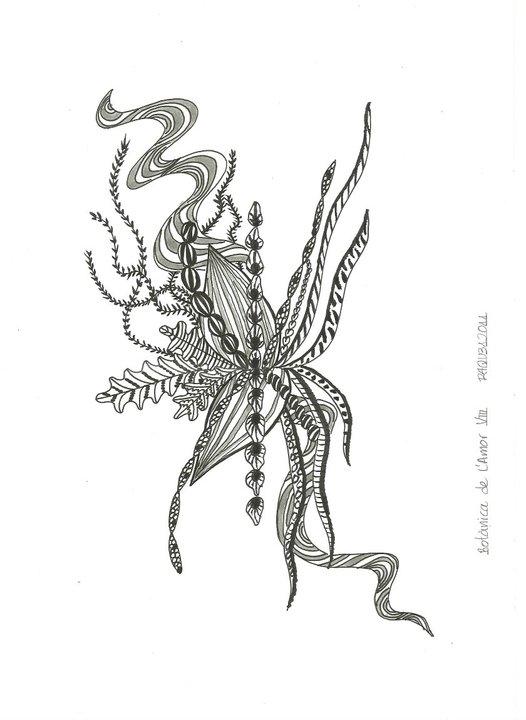 Botànica de l'Amor VIII